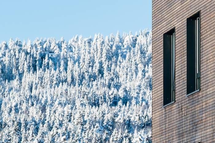Nye Kringsjå studentboliger er et av forbildeprosjektene i FutureBuilt som ble ferdigstilt i 2018. Utbygger: SiO. Arkitekt: AT Plan & Arkitektur AS. Foto: Tove Lauluten